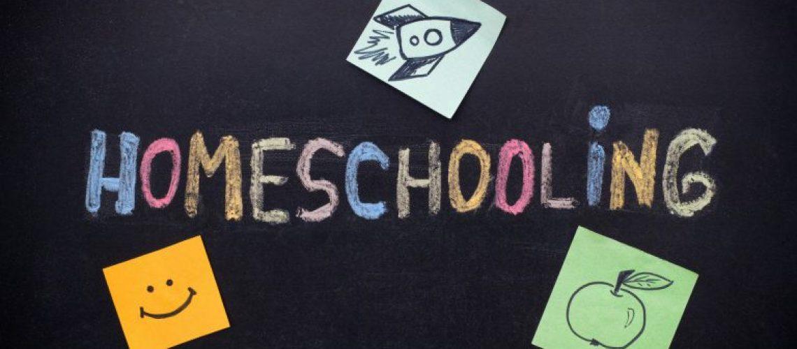 SmoresUp-Homeschooling-768x512